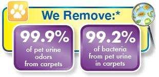 We remove 99.9% pet urine odor